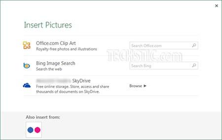 Insert Online Pictures in Excel 2013