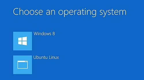 Dual Boot Windows 8 and Linux